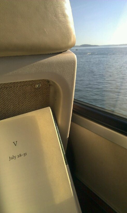 I know Strangers on a Train or The Orient Express would have been more appropriate mysteries to read on my Amtrak ride from Seattle to Portland this past weekend, but I won't complain about the peaceful vistas of the Puget Sound that accompanied TIaS's protagonist in his own disruptive journey. Isn't violence more grisly when it's set in the serene?