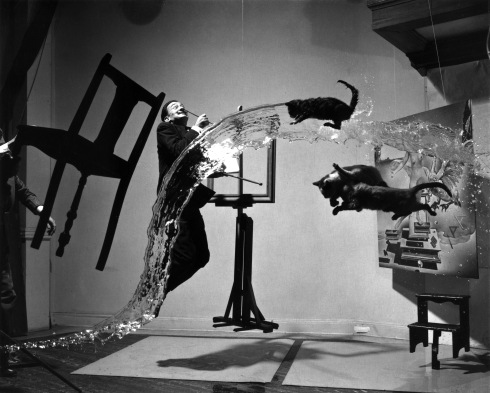"There are no flying cats in The Fall of the Stone City, but I think Dali really captures that whole ""WTF, mate?"" sentimentality."
