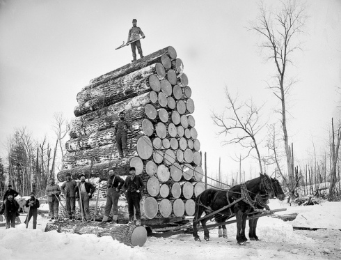 "Logs and loggers (Photo by ""paukrus"")"