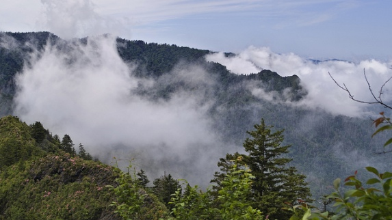 """Don't be fooled by the peaceful vistas. The Smoky Mountains in this story are filled with danger and death. (Photo from """"coloneljohnbritt"""")"""